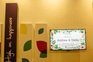 Andrew Stella 16122017 (272 of 600)